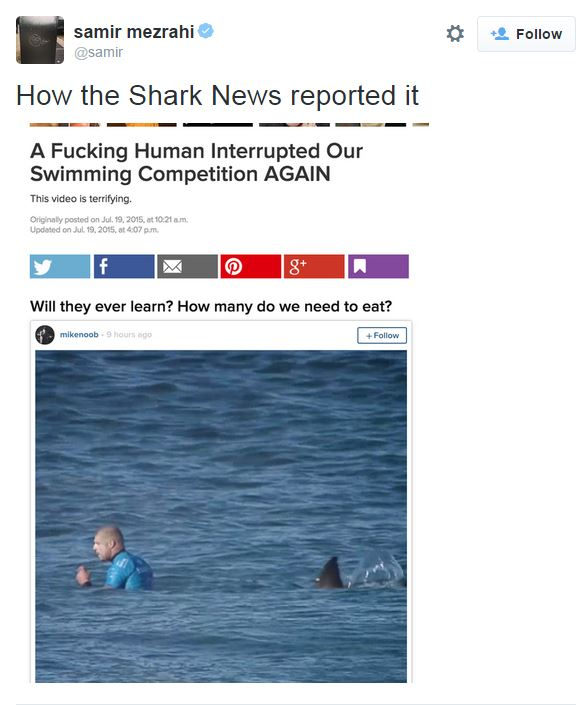 @samir how the shark news reported it: a fucking human interrupted our swimming competition AGAIN