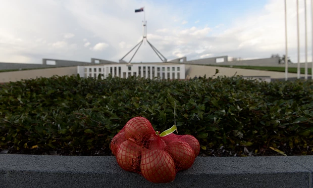A string bag of onions sits on a concrete fence outside Parliament House.
