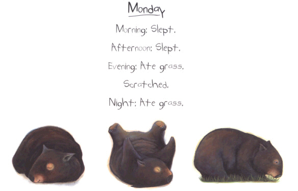 Monday. Morning: Slept. Afternoon: Slept. Evening: Ate grass. Scratched. Night: Ate grass.