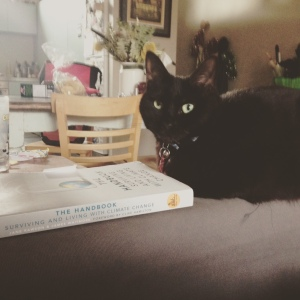 cat reading about climate change